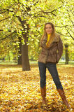 Its Autumn! 2 Royalty Free Stock Images