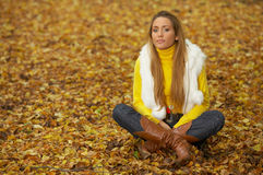Its Autumn! 2 Royalty Free Stock Photo
