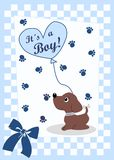 It´s a boy Stock Photography