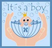 It´s a boy Royalty Free Stock Photos