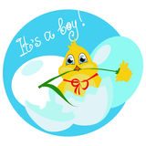 Its a boy. Vector illustration with the image of a newborn chick in the egg  - its a boy Stock Image