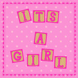 Its a girl card with cubs Royalty Free Stock Photo
