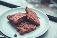 Chocolate cookies. Royalty Free Stock Images