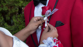 Its Prom!. Placing his prom flower on his jacket neatly Stock Photo