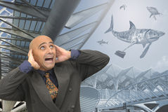 Its a Shark world Stock Images