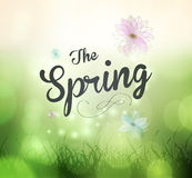 Its Spring Time Royalty Free Stock Image