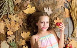 Its so tasty. Cute child with ripe autumn crops. Organic and natural food for kids health. Little girl enjoy eating. Apples. Small girl likes the taste of apple royalty free stock images