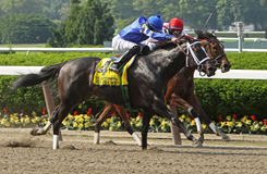 Its Tricky Wins The Ogden Phipps Stakes Royalty Free Stock Photography