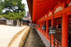 Itsukushima Sintoizm świątynia, Miyajima, Japonia Obrazy Stock