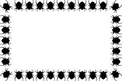 Itsy Bitsy Spiders Royalty Free Stock Photography