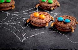 Itsy bitsy spindelkakor fotografering för bildbyråer