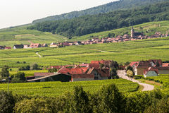 Itterswiller (Alsace) - Panorama Stock Photo