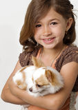 Ittle girl holding chihuahua puppy Stock Photo