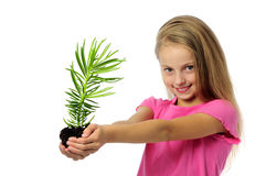Ittle girl with sprout plant Royalty Free Stock Images