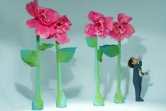 Ittle-Junge und riesige Blumen Stockfotografie