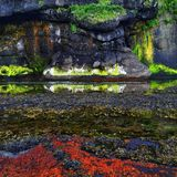 Iturup Kuril öar, Ryssland Det färgrika landskapet av det Okhotsk havet med mossor, alger, vaggar Royaltyfri Foto