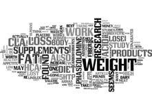 Itword för tillägg för viktförlust är det värda molnet stock illustrationer