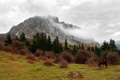 Itxina massif with fog and a horse Royalty Free Stock Photos