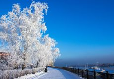 Сity embankment on a frosty sunny day Royalty Free Stock Images