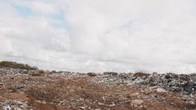 Сity garbage dump, environmental pollution due to lack of recycling technology stock video