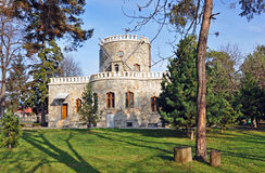 Iulia hasdeu castle near bucharest Stock Photography