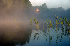 有雾的iv湖早晨 免版税图库摄影