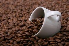 iv för kaffekopp royaltyfria bilder