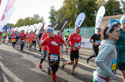 2016 09 25: IV maratón de Moscú El comienzo de los 42 0,85 kilómetros Imágenes de archivo libres de regalías