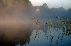 iv mgliście ranka jeziora. fotografia royalty free