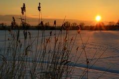 iv-solnedgång arkivbild