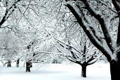 iv-vinterunderland Arkivfoto