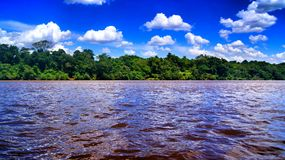 Ivai River royalty free stock image