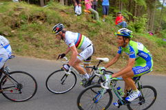 Ivan Basso and Evans. Ivan Basso (Liquigas team) and Evans are approaching the steep slope of Zoncolan mountain during the last Giro d'Italia 2010 race (lap 15 Royalty Free Stock Photos
