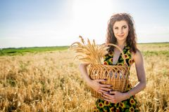 Ivan Kupala zölle feiertag Mädchen auf dem Weizengebiet Lizenzfreie Stockbilder