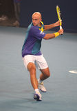 Ivan Ljubicic of Croatia in action Stock Photo