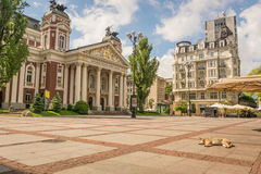 Ivan Vazov theatre and square. Square in front of Ivan Vazoz theater in Sofia, Bulgaria, on a sunny day with a dog lounging in the sun Royalty Free Stock Images