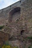 Ivangorod堡垒 库存照片