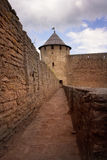 Ivangorod fortress Royalty Free Stock Photos