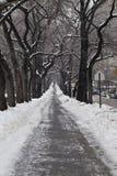 ive θύελλα πεζοδρομίων Στοκ Φωτογραφίες