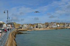 Ives, Cornwall Lizenzfreies Stockfoto