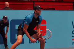 Ivo Karlovic (CRO). VIENNA, AUSTRIA - OCTOBER 19, 2015: Ivo Karlovic (CRO) during his 1st round match against Andreas Seppi (ITA) at the Erste Bank Open in stock photo