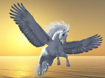 Ivoor Pegasus Royalty-vrije Stock Afbeelding