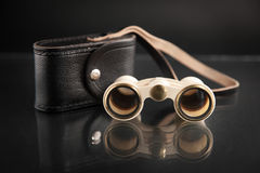 Ivory opera glasses with cover on dark background Stock Image