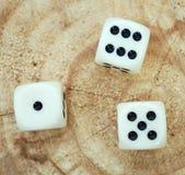 Ivory playing bones Stock Image