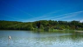 Ivrogne de lac Photos libres de droits