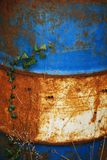 Ivy Against Blue and White Rusted Oil Drum Stock Photography