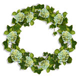 Ivy And Hydrangeas Wreath Border Stock Image