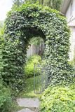 Ivy Arch Doorway Royalty Free Stock Photo