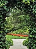 Ivy Arch Over Garden Path fotografia stock