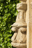 Ivy and architectural detail Stock Photo
